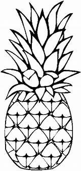Pineapple Coloring Caribbean Painting Drawing Printable Sheets Sweet Colornimbus sketch template