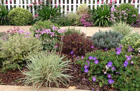 drought tolerant garden designs drought tolerant mimi s garden design