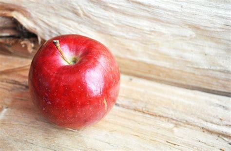 cuisiner les pommes 5 idées recettes pour cuisiner les pommes du verger rue