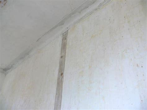 voile de verre plafond besoin conseil r 233 novation plafond murs voile de verre boiseries