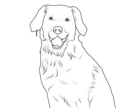 kostenlose malvorlage hunde labrador zum ausmalen