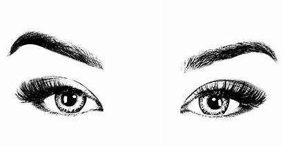 Eyebrows Eyes Eyebrow Eye Clipart Woman Transparent