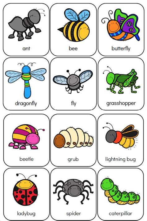 printable preschool bug activities  kids bugs
