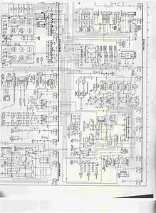 Wiring Diagram - Electrical  Electronics And Lighting
