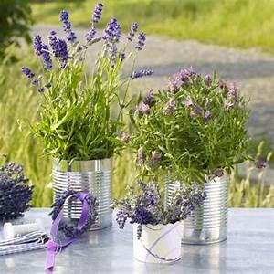 Blumentöpfe Groß Draußen : lavendel deko 34 unglaubliche ideen ~ Eleganceandgraceweddings.com Haus und Dekorationen