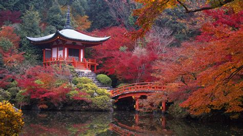 japanese garden temple beautiful kyoto gardens japan world for travel