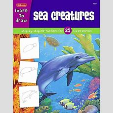 Learn To Draw Sea Creatures  Tcr18907  Teacher Created Resources