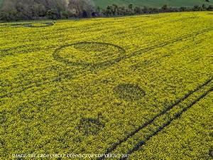 Crop Circle at Tarlton Down, Nr Cherlington ...