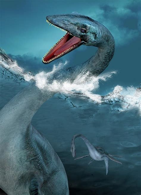 Prehistoric Sea Creatures Photograph by Victor Habbick Visions