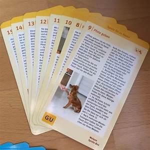 Spiele Für 2 Jährige Zu Hause : pudel welpen was sie beim kauf von pudel welpen beachten sollten ~ Whattoseeinmadrid.com Haus und Dekorationen