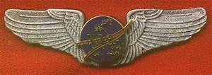 Civilian Astronaut Wings (page 3) - Pics about space