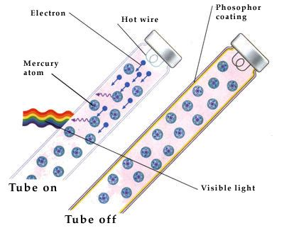 incandescent l working principle how does a fluorescent work
