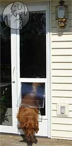 1000 images about temporary pet doors patio window for Removable dog door for sliding glass door
