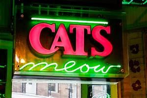 Weekly Calendar Online Cat 39 S Meow New Orleans Nightlife Venue