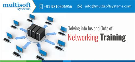 delving  ins  outs  networking training