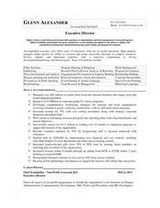 executive director resume non profit sles of resumes