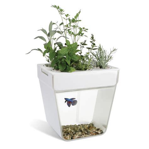 The Aquaponic Fish Tank   Hammacher Schlemmer