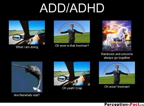 Add Meme - add adhd what people think i do what i really do perception vs fact