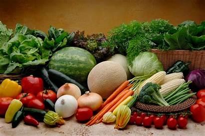 Vegetable Garden Blogs Gardens