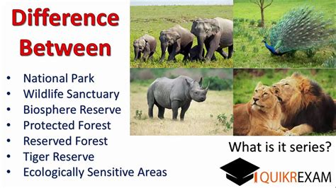 Difference Between National Park,wildlife Sanctuary