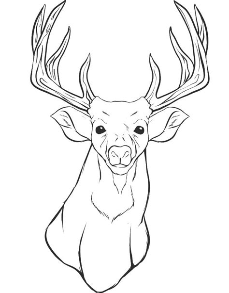Deer Head Coloring For Animal Pages