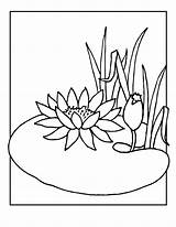 Lily Coloring Pages Water Flower Pad Lilies Drawing Frog Flowers Line Cartoon Clipart Printable Pads Colouring Drawings Adult Draw Pond sketch template