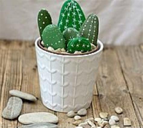 seni melukis batu menjadi hiasan kaktus zona kreatif