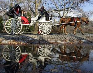 Central Park Auto Béziers : ny class proposes replacing central park horse drawn carriages with vintage electric cruisers ny ~ Gottalentnigeria.com Avis de Voitures