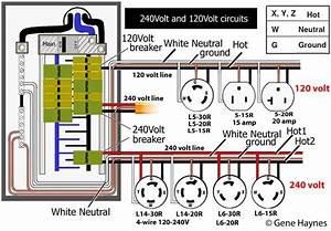 Wiring Manual Pdf  120 240 Generator Wiring Configuration