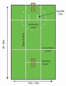 Cricket Pitch Diagram