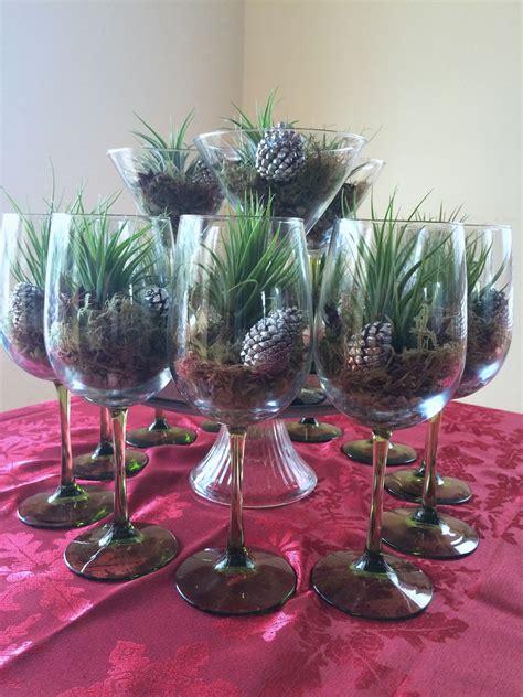 terrariums archives cactus jungle