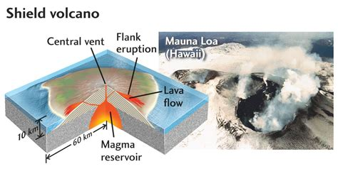 Shield Volcano Diagram Logan Blog