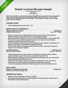 Dental assistant resume sample tips resume genius for Dentist resume template