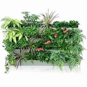 grune wand raffinierter blickfang fur die wohnung bauende With katzennetz balkon mit sun garden eu