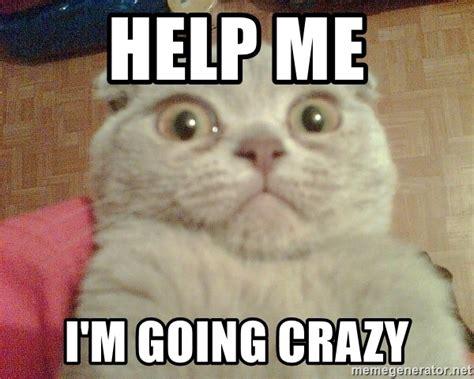 Funny Crazy Memes - crazy memeaddicts
