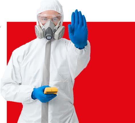 asbestos garage roof removal london