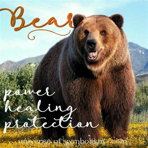 bear symbolism bear meaning bear spirit animal myth