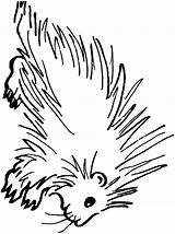 Porcupine Coloring Pages Animals Printable Clipart Animal Sheet Sheets Clip Template Sketch Town Cliparts Web Templates Library Open sketch template