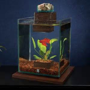 Lava L Fish Tank Petsmart during the amazingaquatics sale you can save 20 on the