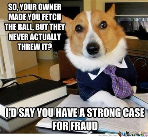 Dog Lawyer Meme - lawyer dog by redz18 meme center