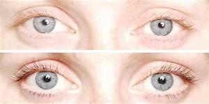 Eyelash Tinting Image collections - Diagram Writing Sample ...