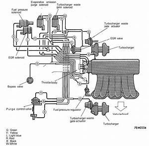 2005-2006 Lgt Colored Vacuum Routing Diagram
