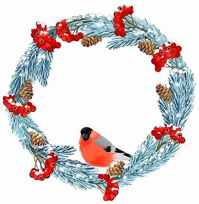 Winter Clip Clipart Wreath Bird Birds Cliparts