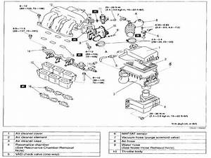 Fire Order 5 4 Ford Engine Diagram