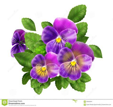 violet cartoons illustrations vector stock images