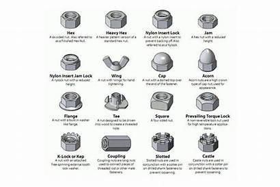 Nut Bolt Identification Nuts Washers Washer Type