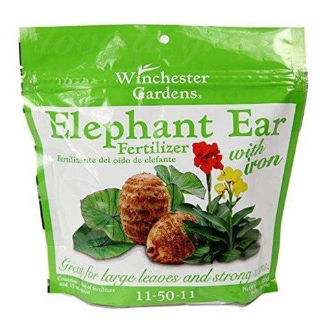 best fertilizer for elephant ears winchester gardens elephant ear fertilizer bag 1 pound