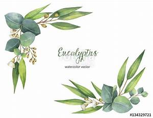 """Watercolor Vector Wreath With Green Eucalyptus Leaves And ..."