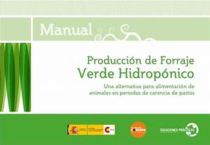Manual Producci U00f3n De Forraje Verde Hidrop U00f3nico