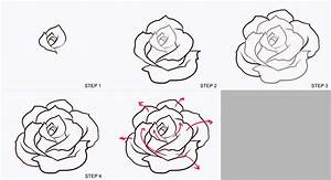 Drawn rose step by step - Pencil and in color drawn rose ...